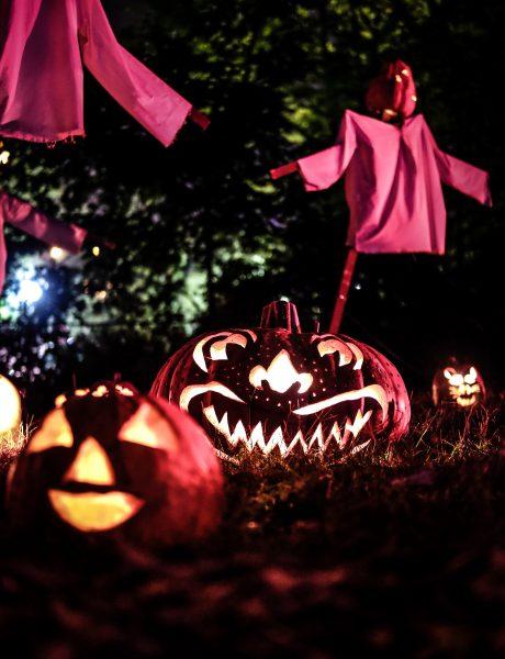 Halloween Jack Lantern